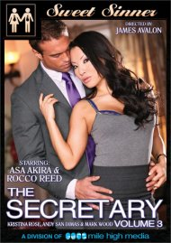 Secretary Vol. 3, The Porn Movie