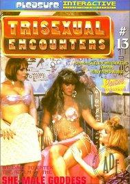 Trisexual Encounters 13 Porn Movie