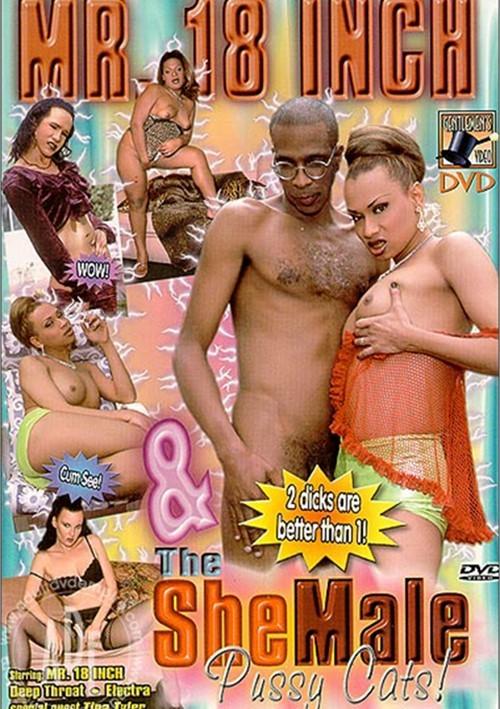 Black nude webcam videos