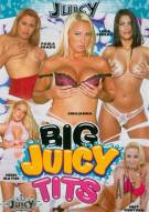 Big Juicy Tits Porn Movie