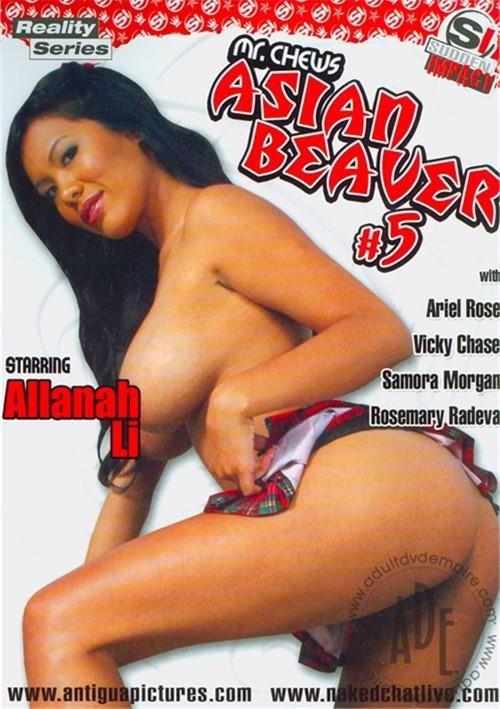 Mrchew asian beaver