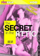 Secret In The Attic, The Porn Video
