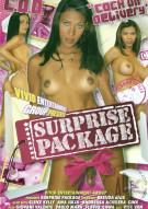 Surprise Package Porn Movie
