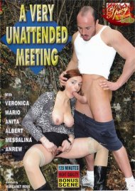 Very Unattended Meeting, A Porn Video