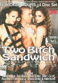 Two Bitch Sandwich Porn Movie