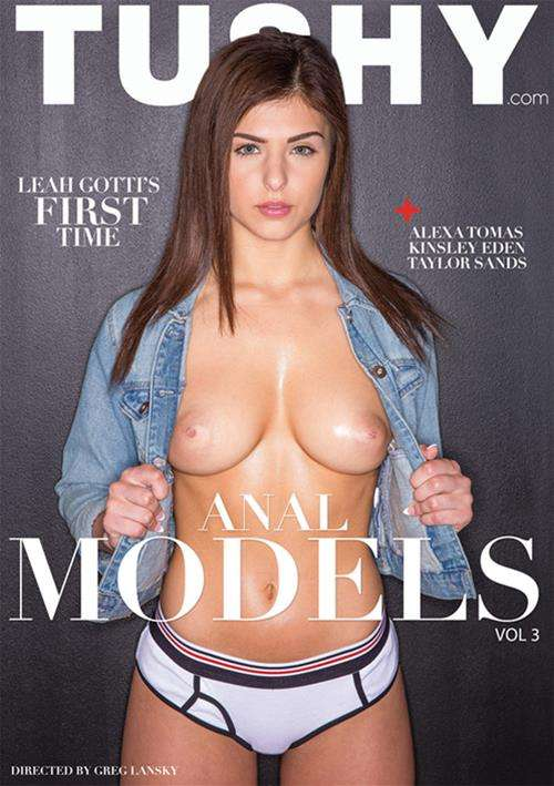 Anal Models Vol  3 (2016)