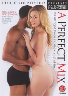 Perfect Mix, A Porn Movie