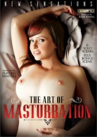 Art Of Masturbation, The Porn Video
