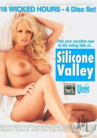 Silicone Valley Porn Movie