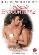 Intimate Encounters 2 Porn Video