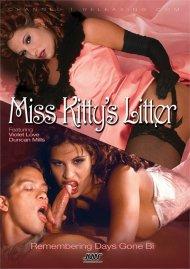 Miss Kittys Litter