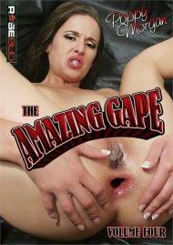 Amazing Gape 4, The Porn Video