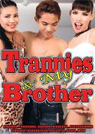 Trannies & My Brother Porn Movie