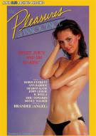 Pleasures of Innocence, The Porn Video