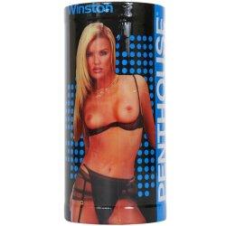 Penthouse Cyberskin Pop-A-Pussy - Alexis Winston Sex Toy