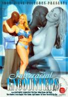 Interracial Encounters Porn Video