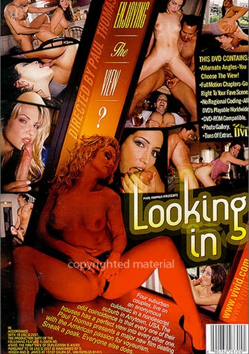 Back cover of Looking In
