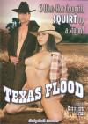 Texas Flood Boxcover