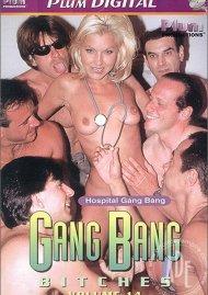 GangBang Bitches 14 Porn Movie