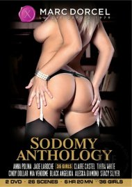 Sodomy Anthology Porn Movie