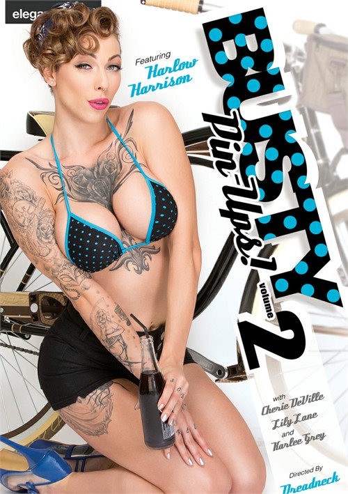 Busty Pin-Ups Vol. 2 porn movie