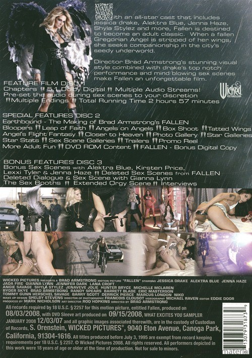 Back cover of Fallen