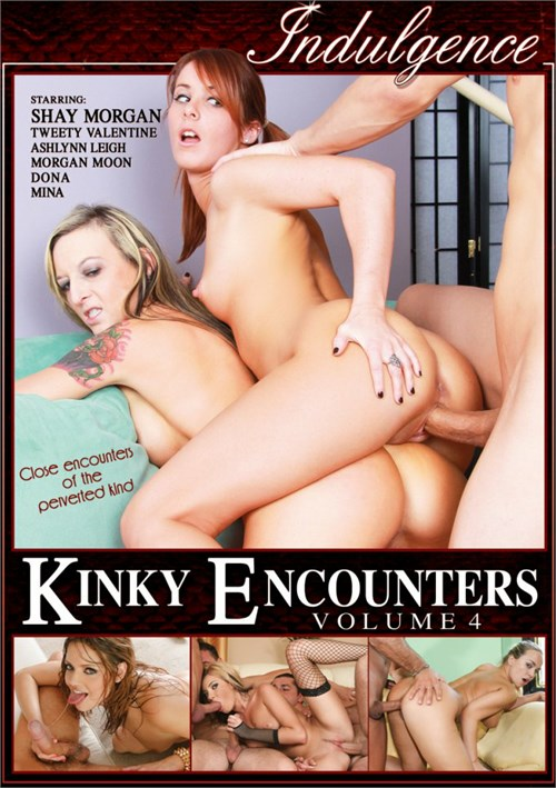Kinky Encounters Vol. 4