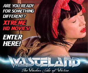 Wasteland Promotion